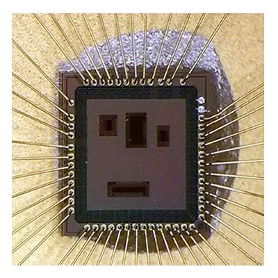enics_Greenbelt2_chip